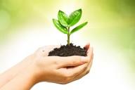 sia-biodegradability